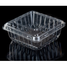 Kunststoff-Heidelbeerfrucht-Clamshell-Verpackungsbox