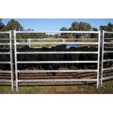 Australia Cattle Panels