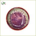 Super high quality Matcha Chawan Matcha bowl type1 11.5*8cm Export to Japan