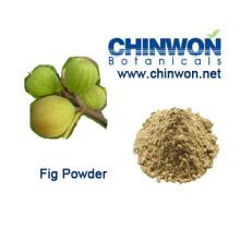 Suplementos dietéticos Frutas secas Higo en polvo