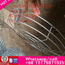 Ventilateur axial de ventilateur de ventilateur industriel de ventilation de tube industriel de plafond de fan d'auvent 220V AC