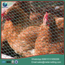 Sechseckiges Drahtgeflecht aus Hühnermaschendraht