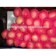 Свежие фрукты яблока / китайское свежее яблоко / оптовая цена яблочного плода