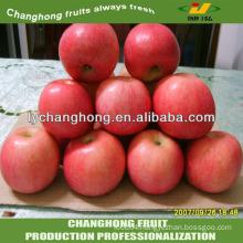 Red apples varieties in China