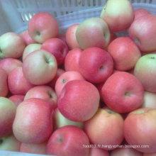 Fournisseur fiable de pomme de gala fraîche