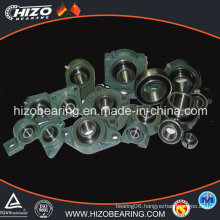 Insert Bearing/Bearings/Pillow Block Bearing (UCFU204)