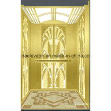 Ascenseur de maison de luxe avec technologie de l'Allemagne (JQ-N007A)