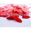 Ningxia Goji Berry / Fruta Wolfberry / Níspero chino