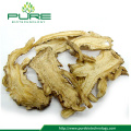Wholesale nature herbs angelica sinensis root