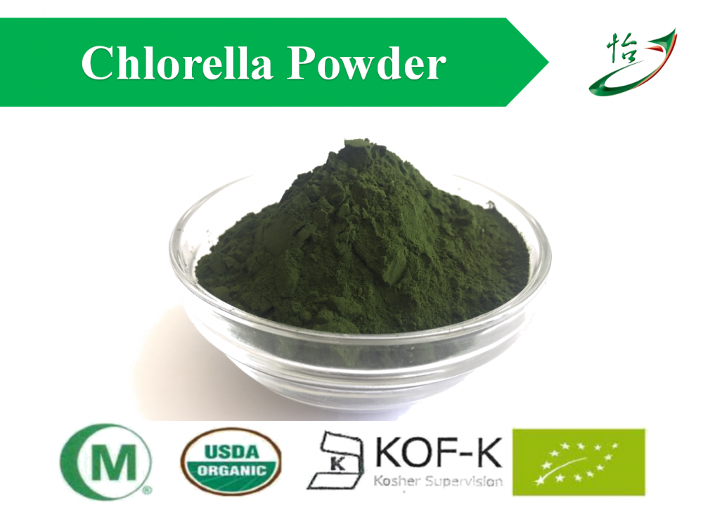 Chlorella Powder For Feed