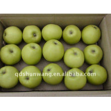 Frischen grünen Gala-Apfel