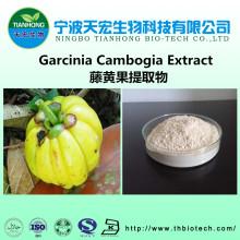 Natural organic garcinia cambogia extract powder/garcinia cambogia extract capsules