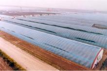 Solar Greenhouse