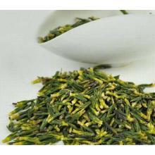 Extracto de hierba caliente de la venta Extracto de plumula de Lotus natural 100%