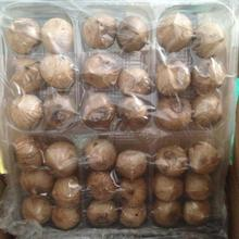 Single Cloves Black Garlic