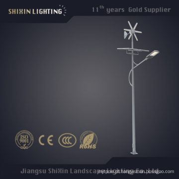 100W Solar LED rua luzes pólo