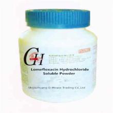 Lomefloxacin Hydrochloride Soluble Powder