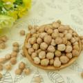 Chinesische Qualität getrocknete Kichererbsen / Kichererbsen konkurrenzfähiger Preis / Kichererbsen kabuli