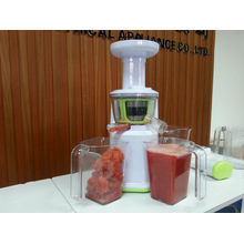 2013 hot sell juicer slow juicer DC motor