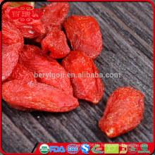 Ningxia-Lycium-Frucht