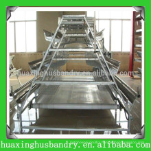 good quality cheap price galvanizing poultry farm design