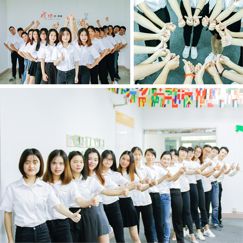 Sales Team 6