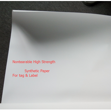 Poster Material  Digital Printing Synthetic Paper