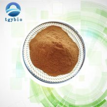 Natural Ginkgo Biloba Leaf Extract/Ginko Biloba Extract