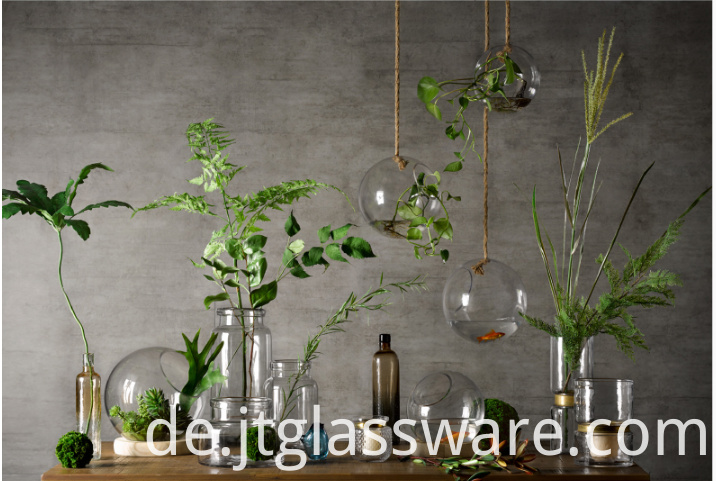 hanging glass terrariums for succulents and air plants
