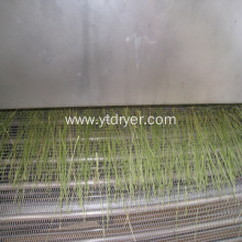 Plant protein vacuum conveyor belt drying equipment