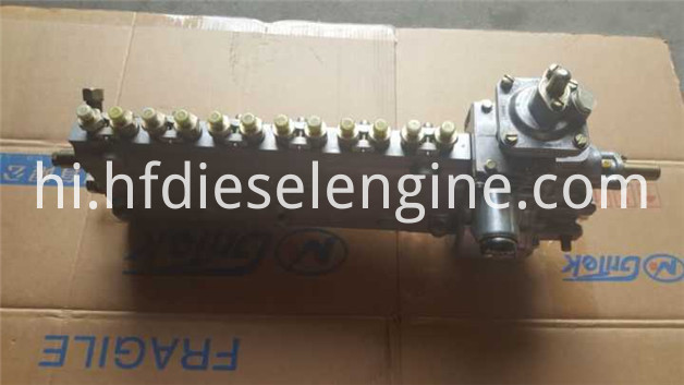 413 fuel injection pump-1