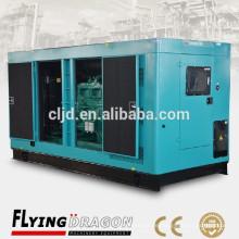 250kw Generator leise, elektrische Baldachin Generator, Marathon-Generator leise 250kw