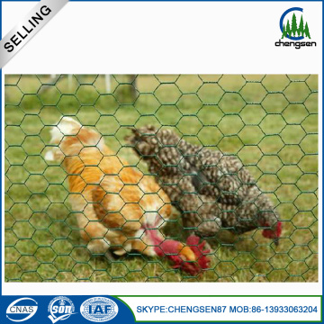 Hexagonal Chicken Woven Wire Mesh