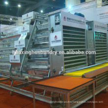 A type layer chicken cage with automatic egg collecting machine