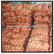 Oignon rouge frais dans des sacs en filet