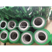 Rings Spiral Wound Gasket (SUNWELL)