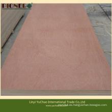 Hot Sales Commercial Plywood para Oriente Medio y África del Norte