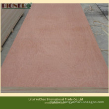 Hot Sales Commercial Plywood for Middle East and North Africa