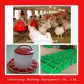 Système d'élevage de poulet pliant à vendre