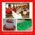 Folding Chicken Breeding Cage System For Sale