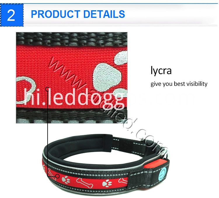 Nylon Glow Dog Collar