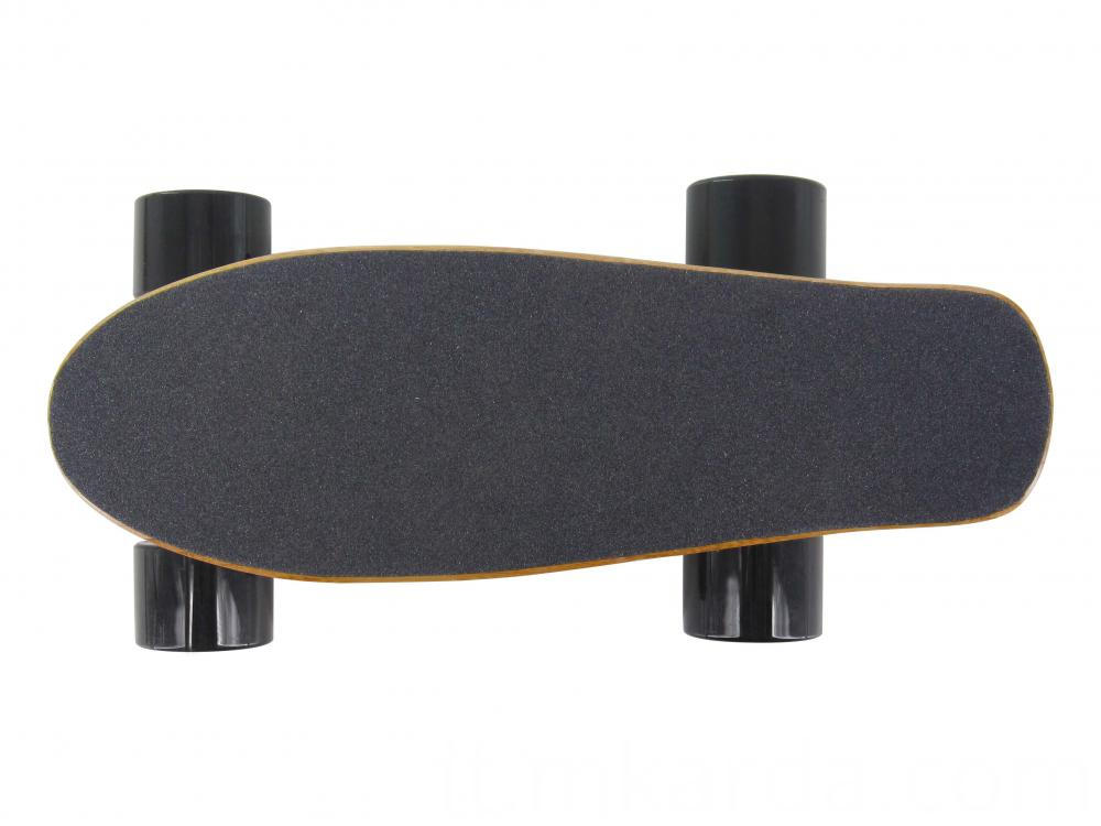 Mini Fish Electric Skateboard