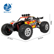 2.4GHz Wireless Remote Control 4 Wheels 4WD Land and Water High - speed RC Car