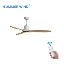 Portable ultrasound system ceiling fan light