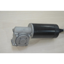 Worm drive motor for elevator door