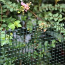 Plastic Square  Mesh Garden Fencing