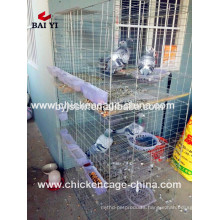Trade Assurance Racing Pigeon House Supplier