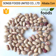 2015 New Crop Sugar Dry Beans