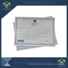Degree Certificate with Barcode and Hot Stamping Hologram Anti-Counterfeiting Printing
