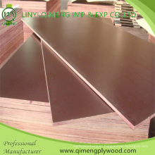 One Time Hot Press 17.5mm Brown Film Faced Plywood in Hot Sale